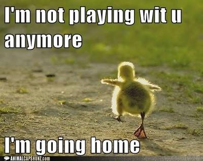 duck 4.jpg